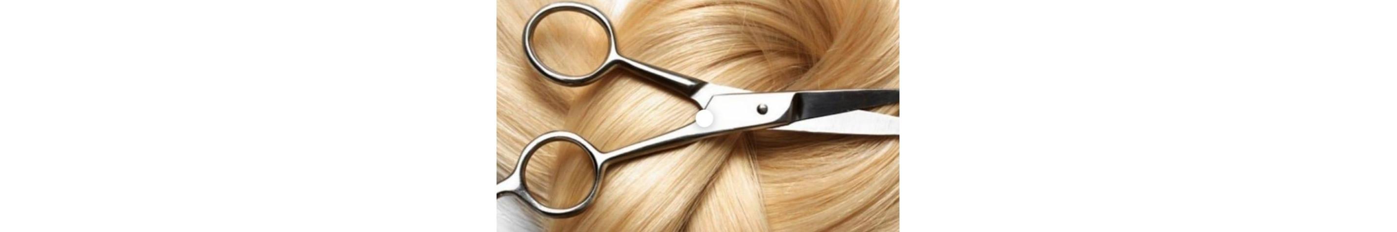 Servicios de peluquería a domicilio