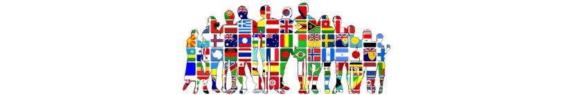 Agencia de traducción Traductores LinguaVox